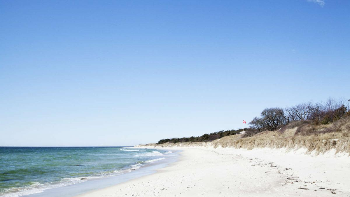 HaveaBite_Kadeau